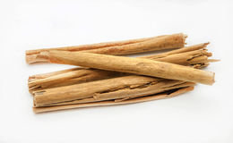 Several cinnamon sticks Royalty Free Stock Images