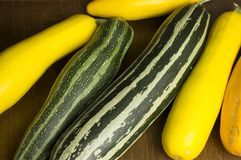 Several colorful courgettes Stock Image