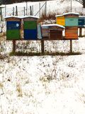 Several colorful protections for bees in a winter setting stock photography