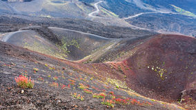 Several craters on Mount Etna in Sicily. Travel to Italy - several craters on Mount Etna in Sicily in summer day stock photo
