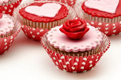 Several cupcakes Stock Images
