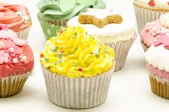 Several cupcakes Stock Image