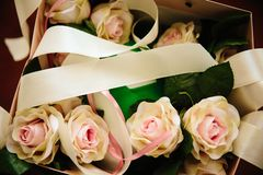 Several delicate roses lie in a box with a bow stock photos