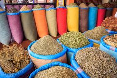 Several different colourful spices in Marrakesh, Morocco royalty free stock photos