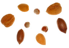 Several different nuts Royalty Free Stock Images