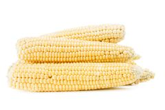 Several ears of corn on a white background. Some fresh corn cobs on a white background, photographed in the studio Royalty Free Stock Photography