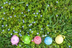 Several Easter colored eggs hanging on a tree branch color sunny spring day. Royalty Free Stock Photo
