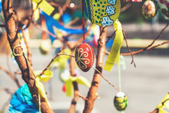 Group painted Easter eggs on tree branch. Several Easter colored eggs hanging on a tree branch color sunny spring day royalty free stock images