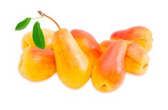 Several European pears on a light background Royalty Free Stock Photos