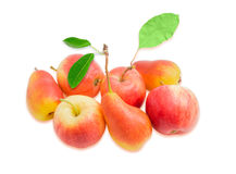 Several European pears and red apple on a light background Stock Images