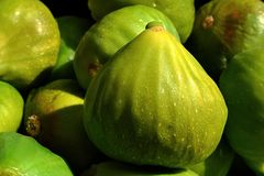 Several fig ( Ficus Carica Verdino) fruit texture in afternoon sun Royalty Free Stock Photo