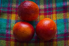 Several fresh red oranges have just been picked from a tree and piled on a checkered fabric of various bright colors. Several fresh red oranges have just been royalty free stock photos