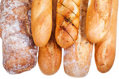 Several freshly baked loaves of bread Royalty Free Stock Image
