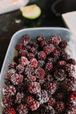 Several frozen blackberries in plastic box. Close-up of several frozen blackberries with different shades of red Royalty Free Stock Photo