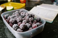 Several frozen blackberries in plastic box on kitchen. Close-up of several frozen blackberries with different shades of red Royalty Free Stock Photo