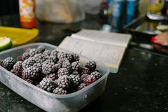 Several frozen blackberries in plastic box on kitchen. Close-up of several frozen blackberries with different shades of red Stock Image