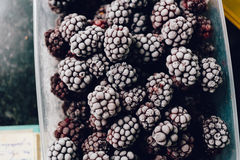 Several frozen blackberries in plastic box on kitchen top view. Close-up of several frozen blackberries with different shades of red Royalty Free Stock Photo