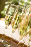 Several glasses of Champagne stock photos