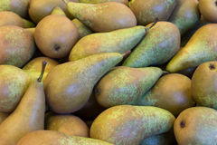Several green pears Stock Photography