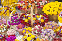 Several hand made flower bouquets Royalty Free Stock Image