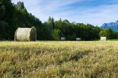 Several hay bale at fresh mowed meadow Royalty Free Stock Image