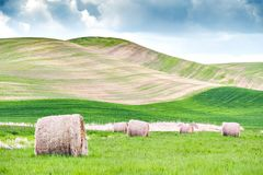 Several Hay Rolls on Grass Field Within Mountain Range Stock Photography