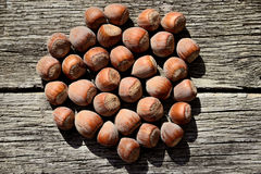 Several hazelnuts in shell on a wooden background. Top view Royalty Free Stock Photos