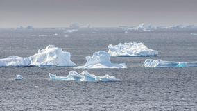 Several icebergs scattered in Antarctica bay royalty free stock image