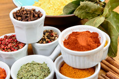 Several Indian spices Stock Photography