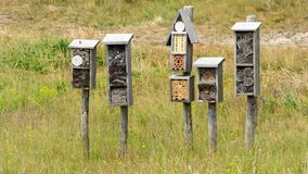 Several insect hotels royalty free stock image