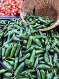 Several Jalapenos pouring out of a basket. Several Jalapeno peppers pouring out of a basket at a vegetable market royalty free stock image