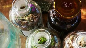 Jars and bottles of herbs stock video