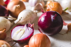 Several kinds of different onion bulbs lying on an old wooden table painted in white. Royalty Free Stock Image