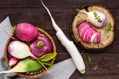 Several kinds of radish daikon, Chinese red, green on a wooden table. Useful vitamins ingredient for salads. The top view Royalty Free Stock Photo
