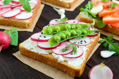 Several kinds of sandwiches with vegetables: radish, tomatoes, cucumber, arugula on crispy toast Royalty Free Stock Photo