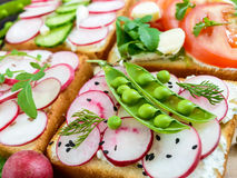 Several kinds of sandwiches with vegetables: radish, tomatoes, cucumber, arugula on crispy toast Royalty Free Stock Photography