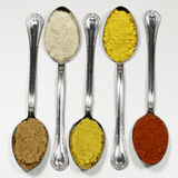 Several kinds of spices and food coloring. Square image format Stock Photography