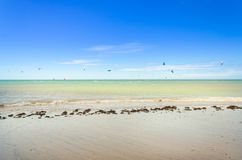 Several kite surfing on the air at the Cumbuco. Beach in Ceara Royalty Free Stock Image