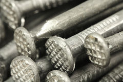 Several large nails  background Stock Photography