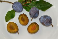 Whole and halved plums - detail Royalty Free Stock Photo