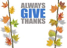 Several leaves hanging on tree branch and always give thanks Royalty Free Stock Images