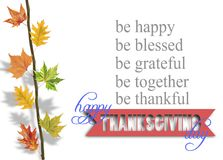 Several leaves hanging on tree branch and thanksgiving. Close royalty free stock image