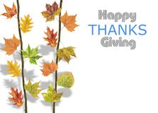 Several leaves hanging on tree branch for thanksgiving. Close stock photo