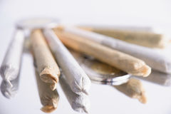 Several marijuana joints rolled on white background Royalty Free Stock Photos