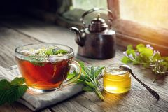 Several medicinal plants and herbs on table, healthy herbal tea cup, honey jar and vintage copper tea kettle