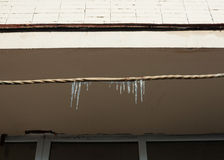 Several melting icicles Stock Images