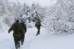Several military run with skis in the winter forest on a cloudy day stock photo