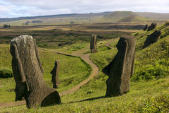 Several moai at Rano Raraku, Easter Island Royalty Free Stock Images