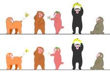 Several monkeys set Stock Photos