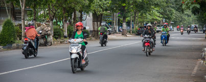Several motorcyclists traveling on the paved road past the trees Stock Images